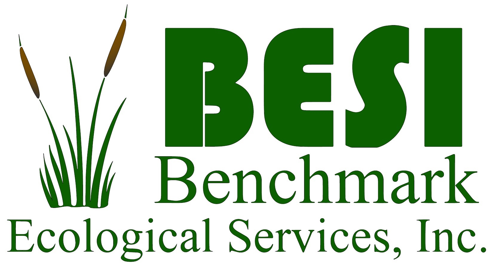 Benchmark-Ecological-Services-Logo