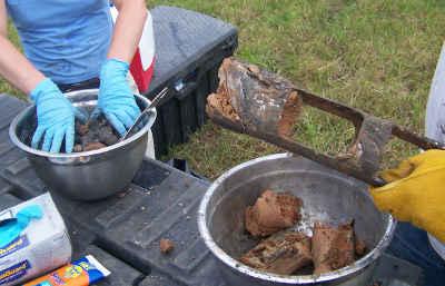 surface-soil-sampling-texas